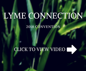 LYME CONNECTION.jpg